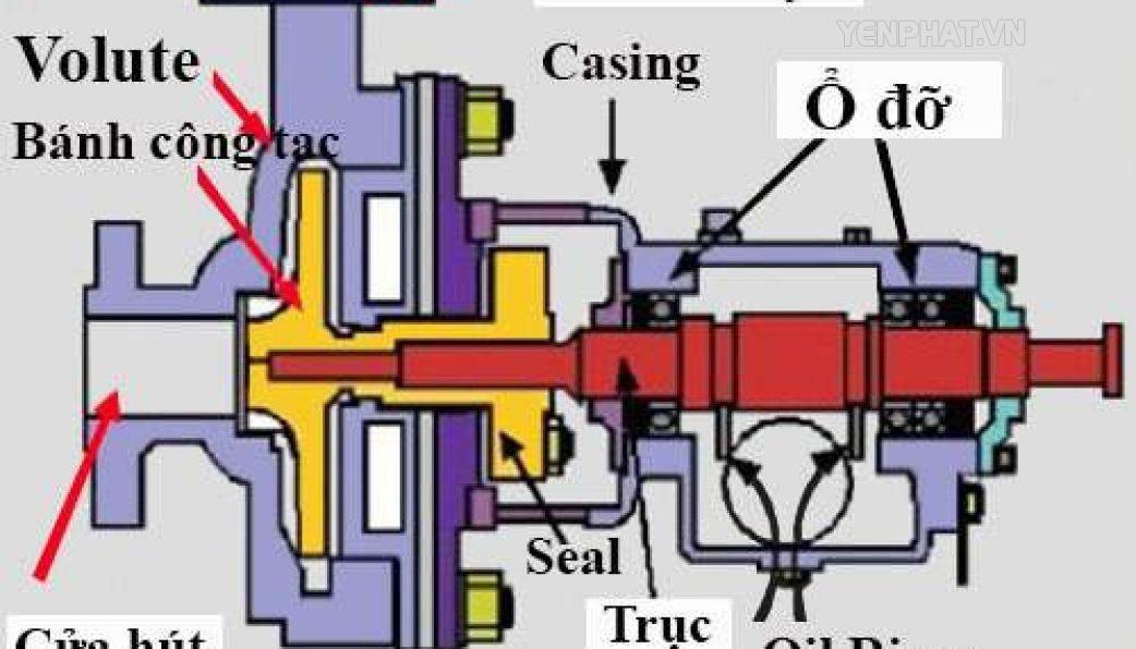 Cấu tạo của máy bơm nước