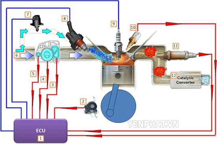 Cấu tạo cơ bản của hệ thống phun xăng điện tử