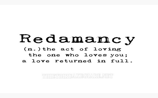 redamancy nghĩa là gì