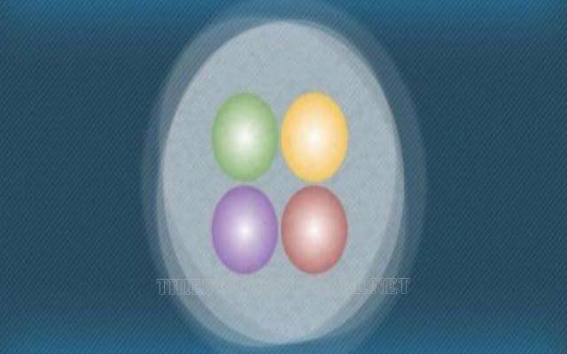 hạt hạ nguyên tử là gì